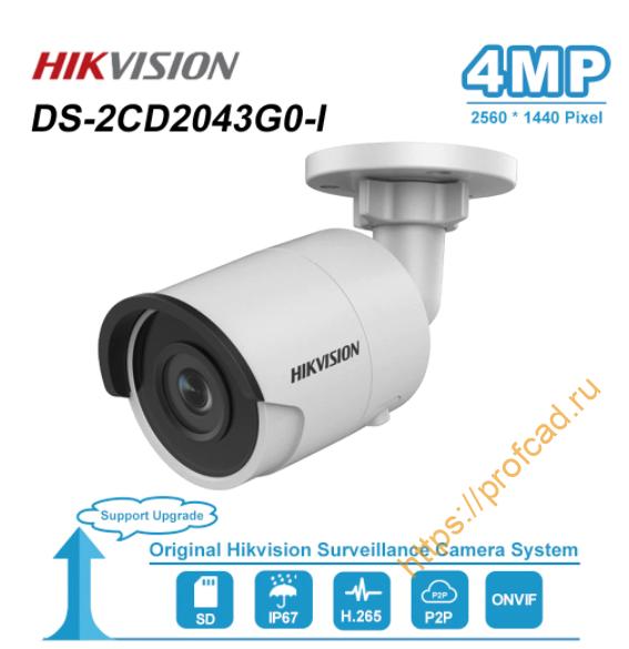 CCTV DS-2CD2043G0-I